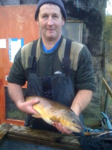 Wullie holding a 5lb plus Broodstock Brown Trout
