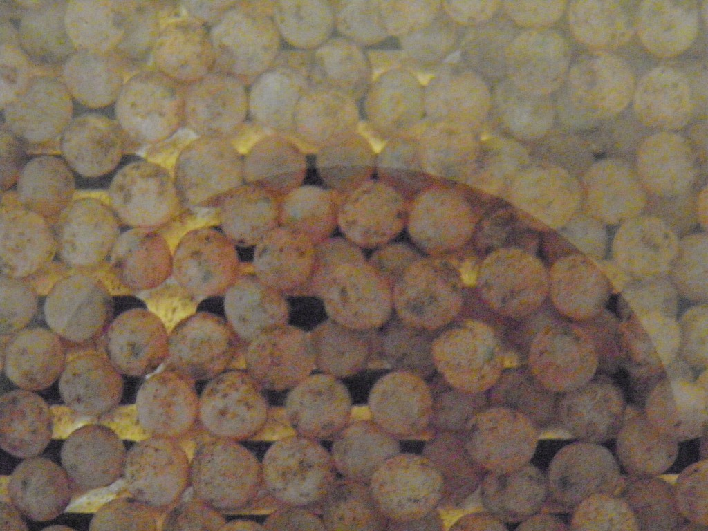UAAA Eggs 070112