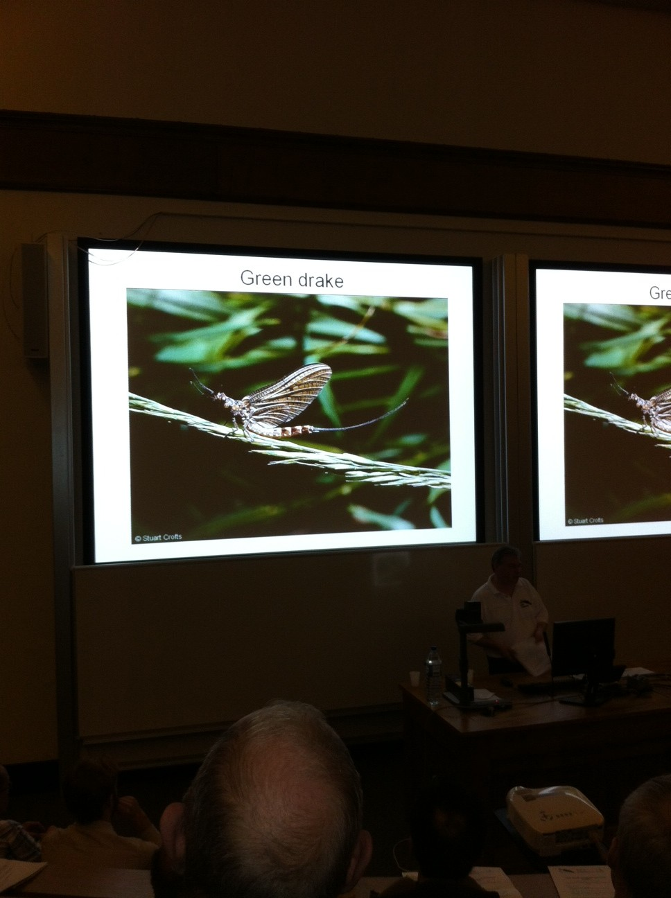Slide of Green Drake from CRIMP launch - talk by Stuart Crofts