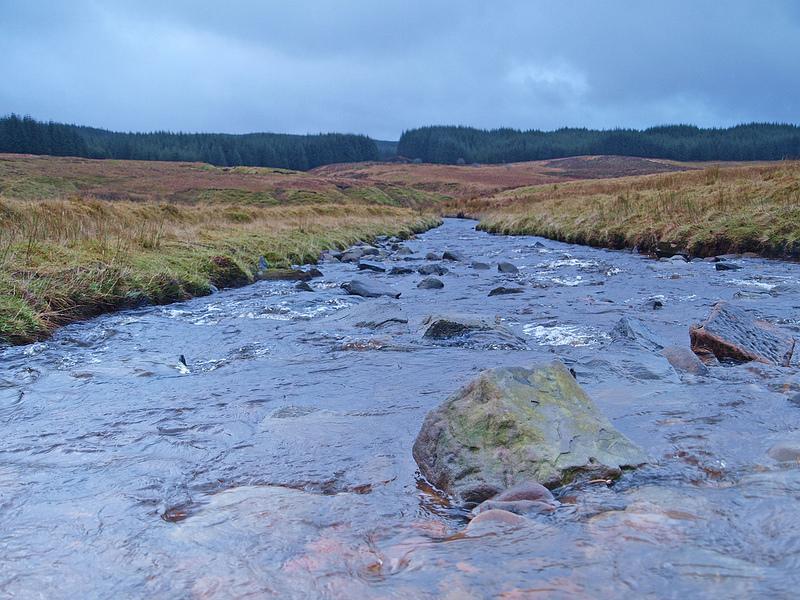 The Glengavel Water - James Muldoon