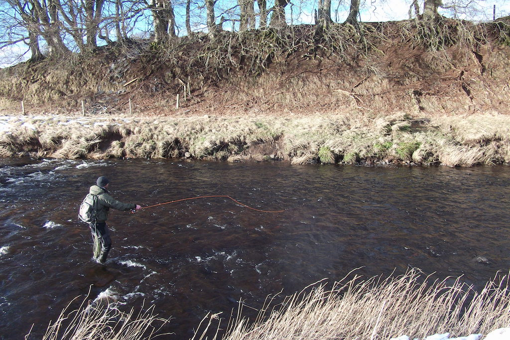 Hunting for elusive Upper Avon Grayling