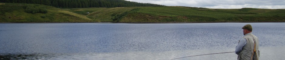 Angler Fishing in the Ripple at Glengavel
