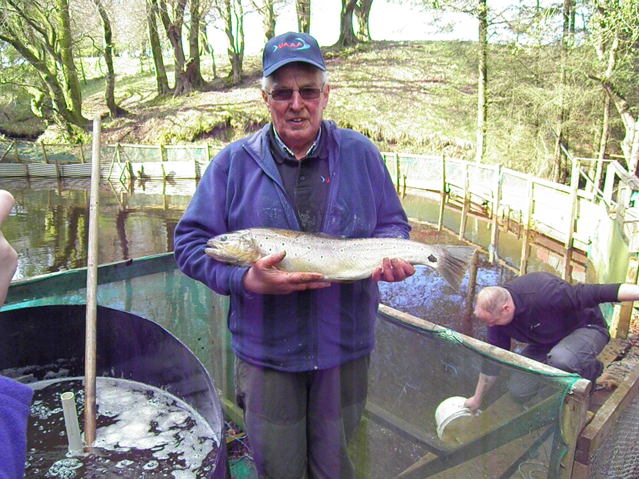Jim proudly showing off a fine Brownie from the UAAA's rearing ponds ready for stocking.