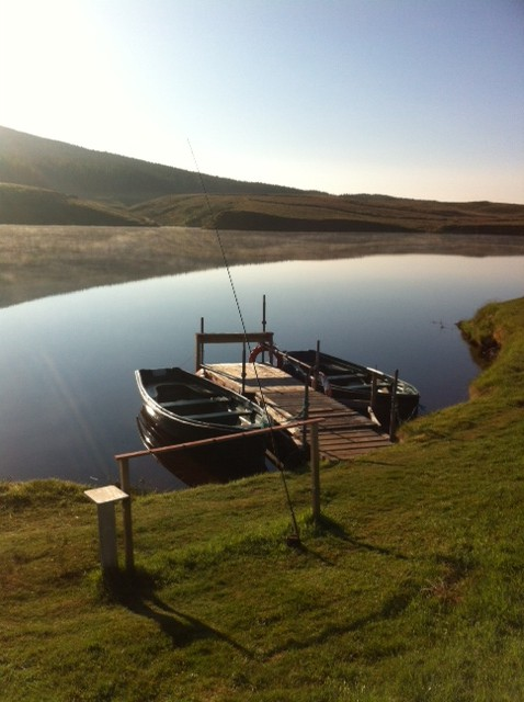 Glengavel Boats in the morning.