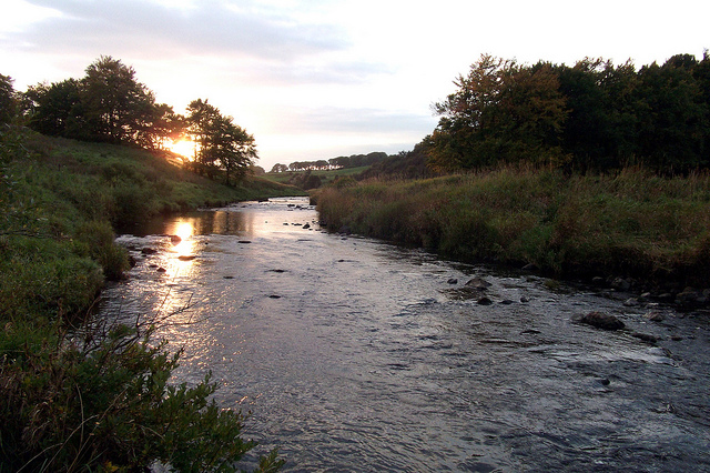 Evening on the Upper Avon by Davy Learmonth